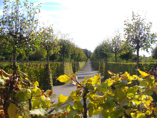 Kanalgarten Eremitage Bayreuth