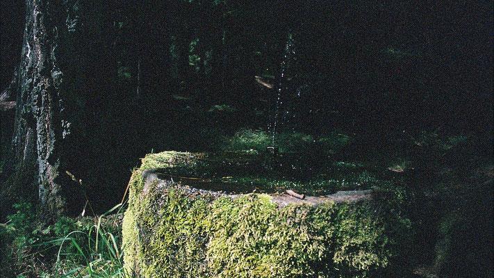 Kleiner Brunnen am Wegesrand