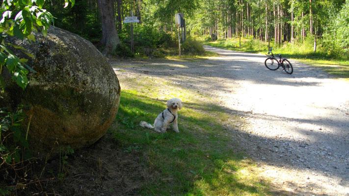 Kleine Rast auf dem Weg zur Luisenburg