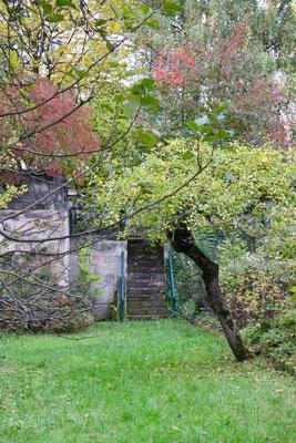 Treppe zum hinteren Teil des Gartens mit Brunnen