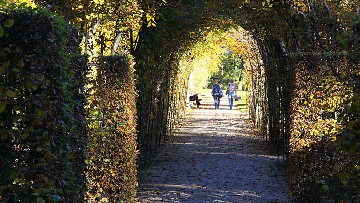 Laubengänge im Schlosspark Fantaisie