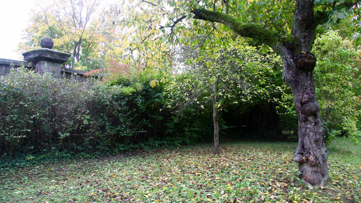 Gartenteil/Ebene 3 – hat hier die Dichter-Laube gestanden?