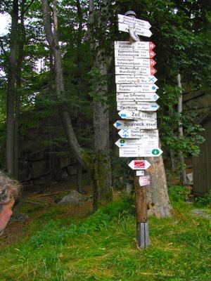 Schilderwald am Großen Waldstein