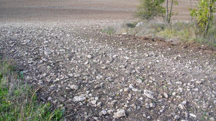 Der steinige Boden