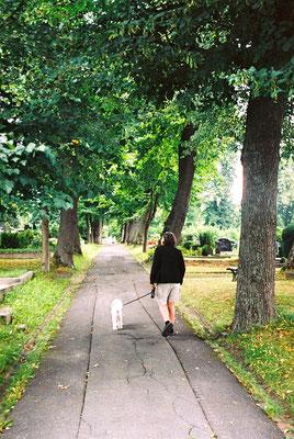 Auf dem Friedhof von Schwarzenbach suchen wir die Grabplatte des Vaters von Jean Paul