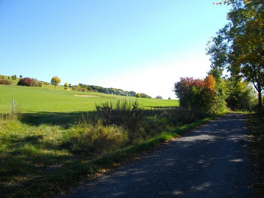 Auf dem Jean-Paul-Weg auf dem Rodersberg