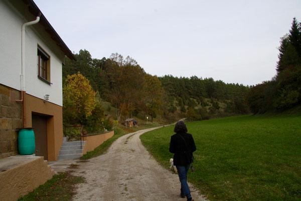 Aufgang zum Wacholdertal bei Wonsees
