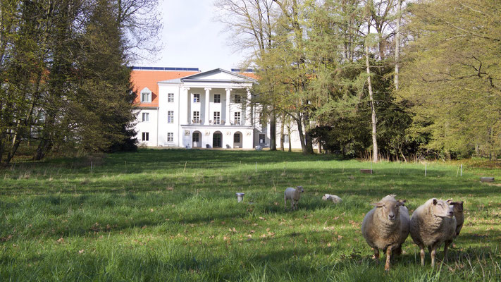 Das ehemalige Schloss Löbichau – heute Seniorenheim