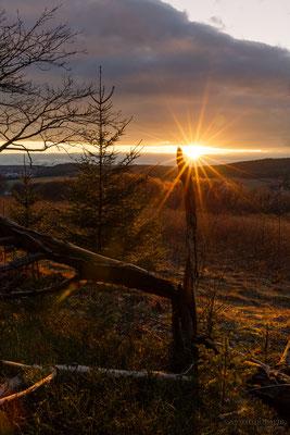 Sonnenuntergang auf dem Sauberg