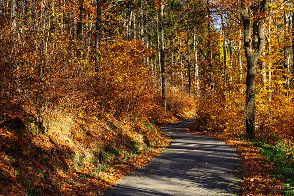Herbstlicher Weg Richtung Talsperre Stollberg