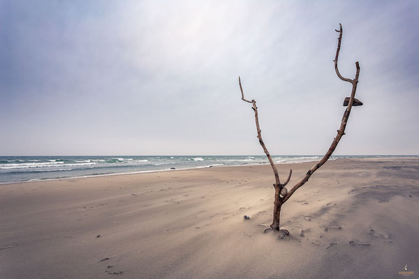 Strand von Backenberg