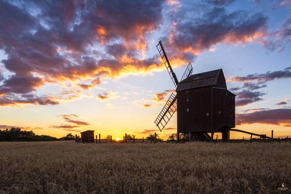 Alte Windmühle in der Dahlener Haide