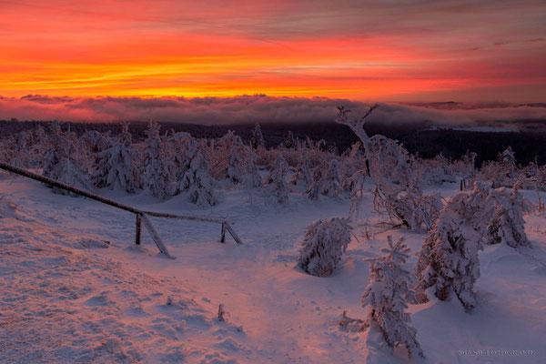 Glutroter Himmel kurz nach dem Sonneuntergang auf dem Fichtelberg