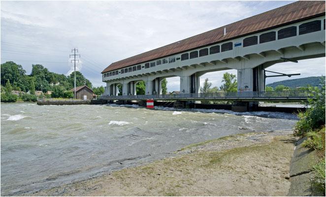 Stauwehr Winznau, oberhalb sank der Wasserspiegel
