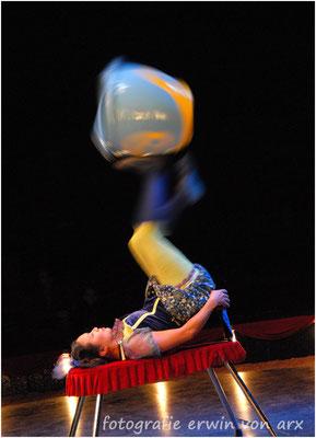 Zirkus Monti