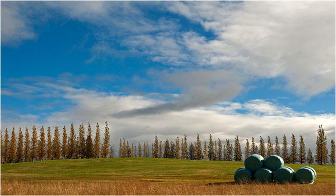 Island, Herbstfarben im Sonnenlicht