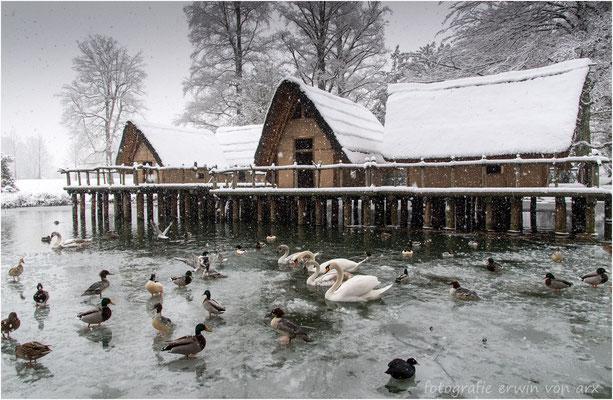Ein Wintertag im Ballypark, Grossandrang vor dem Pfahlbauerdorf