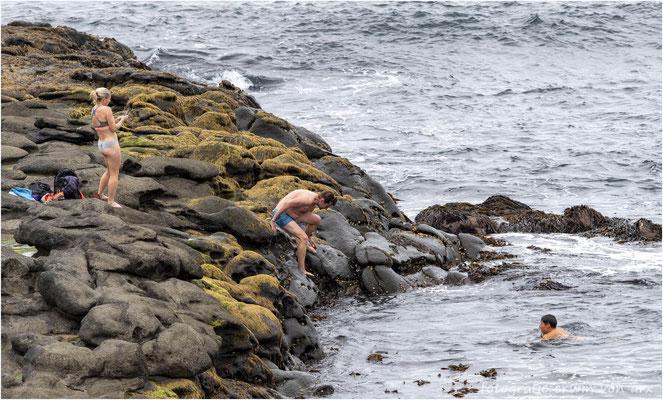 Überhitzte Finnen kühlen sich in der Bucht von Aeduvik ab