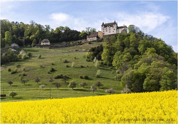 Lostorf, Schloss Wartenfels