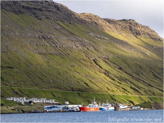 Ánirnar, Fischerflotte und Fabrick