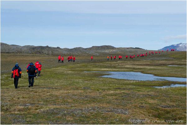 Wir machen eine längere Wanderung über die Tundra bis zur nächsten Bucht