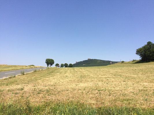 """Im Hintergrund die """"Bruchhauser-Steine"""" oberhalb von Olsberg..."""