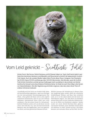 Regina Röttgen, Vom Leid geknickt - Scottish Fold, Katzenmagazin 08/09/218, CH