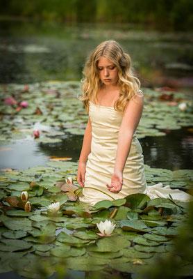 Waterlelie, fotografie Hardenberg