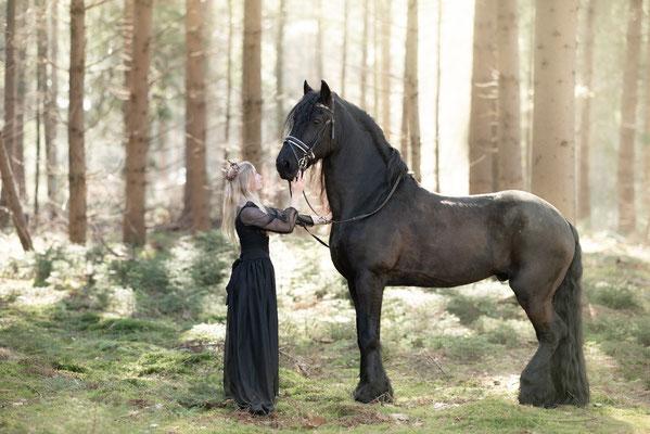 modelfotografie, fantasie, sneeuw, fotograaf hardenberg, fotograaf overijssel, paardenfotografie