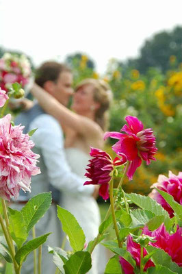 Trouwreportage bloemenpluktuin Dalfsen