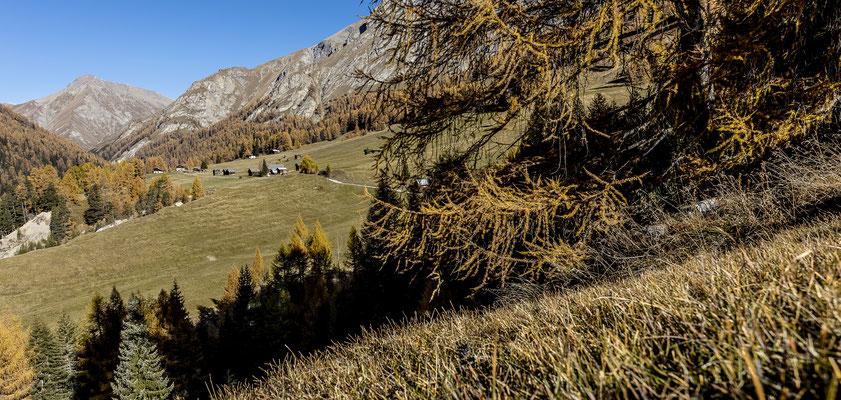 Weg nach Prà San Peider im Herbst