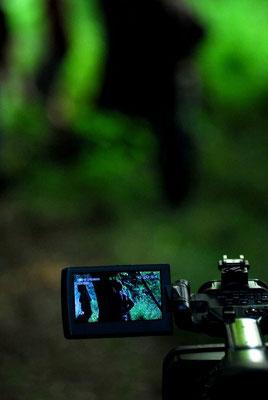 Kamera in Action