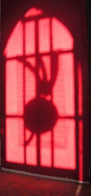 """""""ombre de radis"""" (2012) photographie à Rennes."""