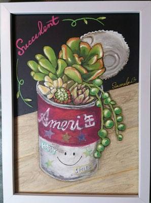 多肉植物 アメリ缶