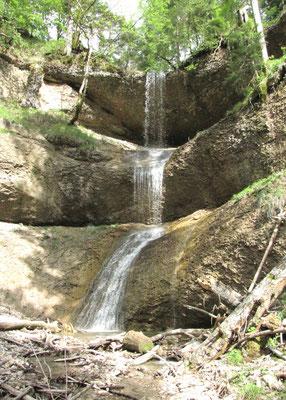 Wasserfall/Giessen Schwämmibach im Schwämmibachtobel