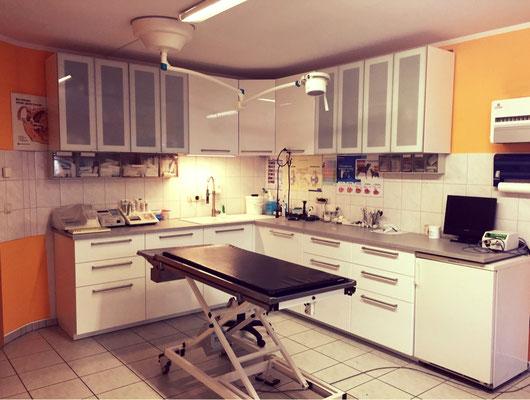 Behandlungszimmer Tierarztpraxis Strausberg