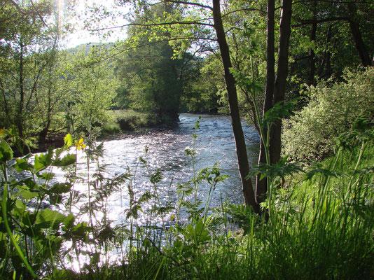 La rivière Alagnon, Moulin du Bateau.