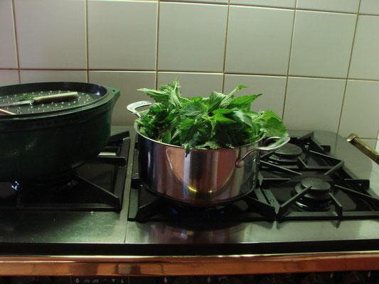 Ce soir, soupe à l'Ortie!