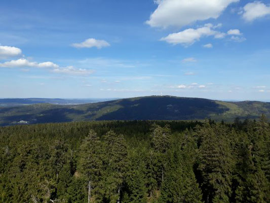 Oko-Blick zum Schneeberg