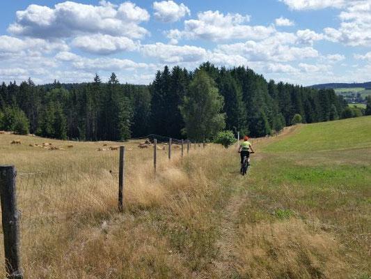 Trail Schüsselstein