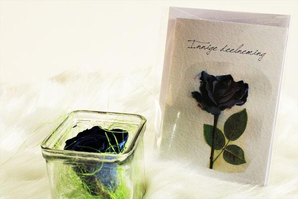 Innige deelneming + blauwe roos in glas - € 12.95 - art. KATE022