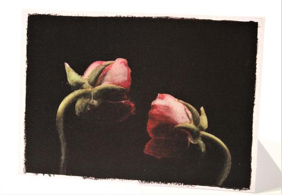 Rode rozen - € 2.95 - art. KATE010