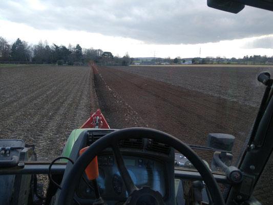 Sobald der Boden trocken genug ist kann gepfügt werden. Ein im Frühjahr gepflügter Boden erwärmt sich schneller, sodass die Kartoffeln sich zügiger entwickeln.