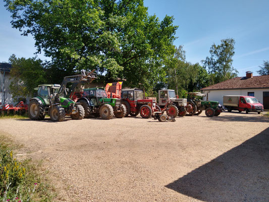 Unser Traktorfuhrpark aufgereiht von Groß nach Klein und davor der Einachsschlepper. Jeder Traktor hat seine Stärken und Schwächen und wird entsprechend genutzt. Von 62 PS und Baujahr 1971 bis 150 PS und Baujahr 2006 ist alles dabei...