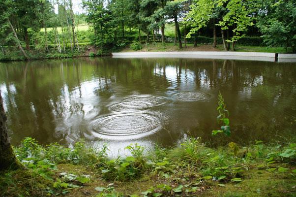 Als wir die Umgebung erkundeten fanden wir einen tiefen Teich.