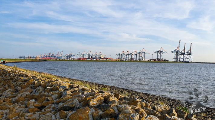 Imsum - Deichwiesen mit Blick auf den Verladehafen von Bremerhaven