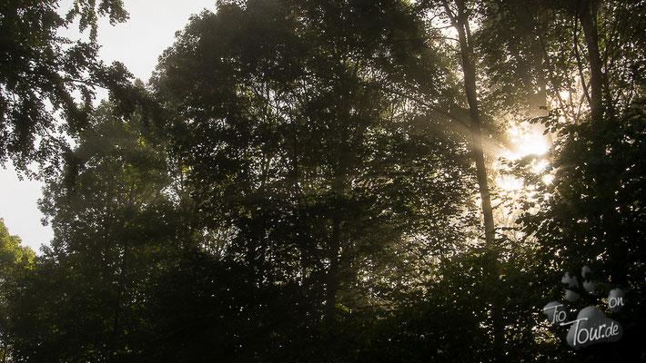 Westerwaldimpressionen