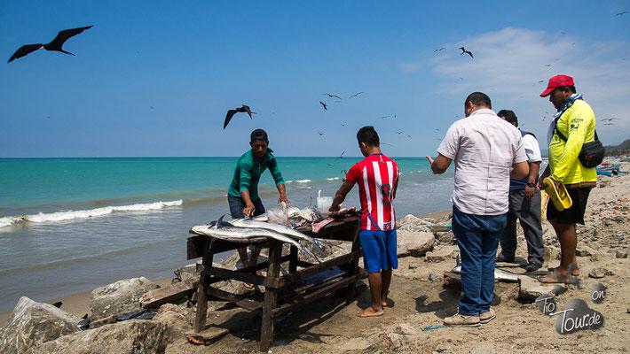 El Matal - hier wird der frisch gefangene Fisch direkt filetiert