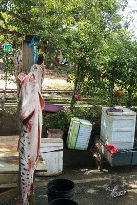 Fischangebot am Straßenrand