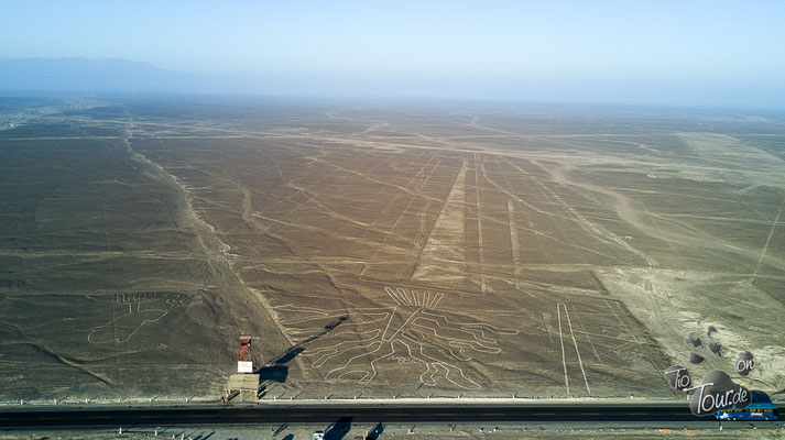Nazca-Linien